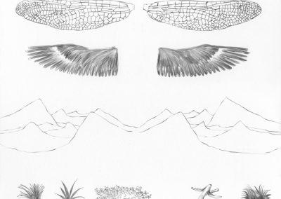 """Paradise lost #006"", blyant på papir, 30 x 30 cm, 2009"