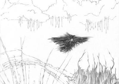 """Paradise lost #007"", blyant på papir, 30 x 30 cm, 2009"