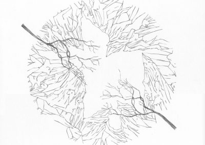 """Paradise lost #020"", blyant på papir, 30 x 30 cm, 2009 (solgt)"