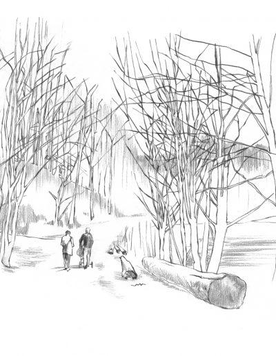 Bøkeskogen